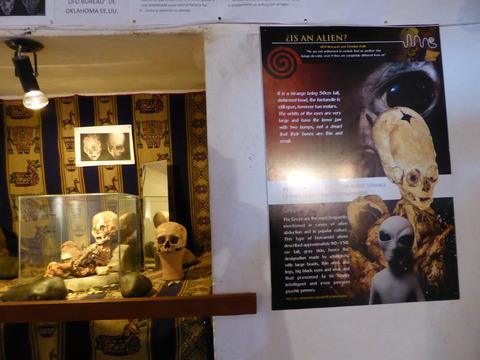 アンダワイリーヤスの博物館7