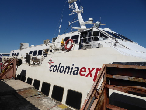 coloniaexpress (15)