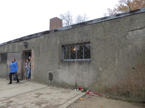 Auschwitz (111)