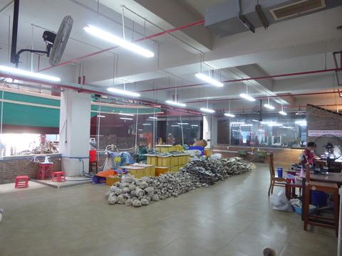 真珠工場 (7)