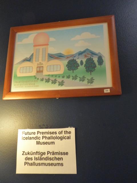 ペニス博物館 7