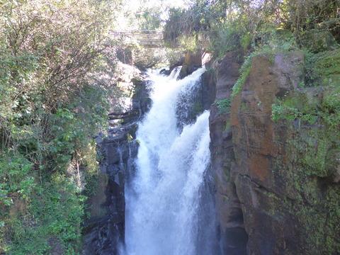 イグアスの滝 (164)