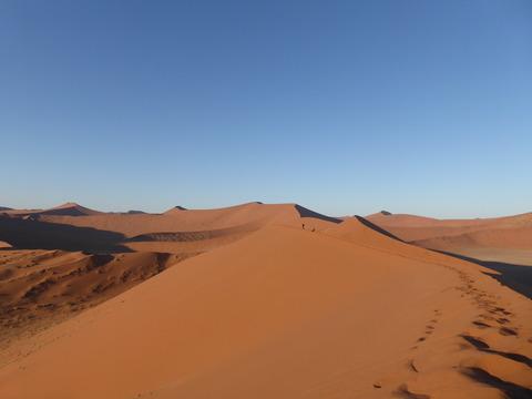 ナミブ砂漠 4