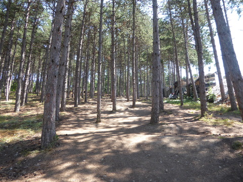 要塞への道 (5)