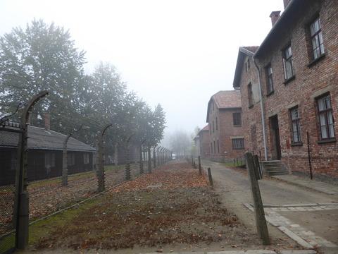 Auschwitz (14)