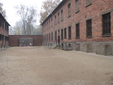 Auschwitz (93)