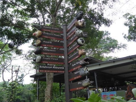 Singapore zoo8