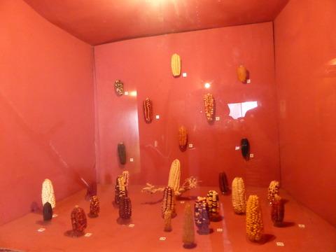 アンダワイリーヤスの博物館2