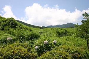 鶴の湯 周りの景色2