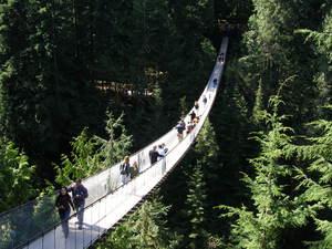 キャピラノ吊橋