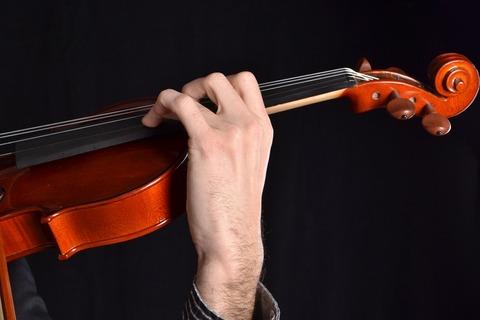 violin-3666219_960_720