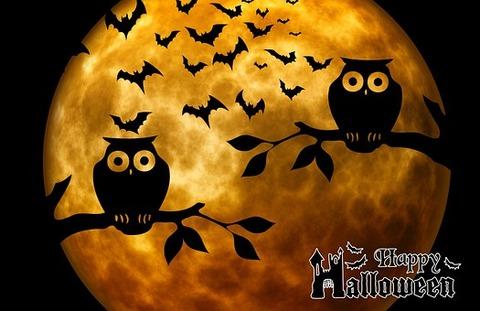 halloween-975519__340