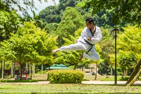 martial-arts-2924161_960_720