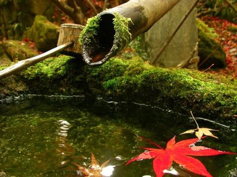 kyotoshikyocerabijutukan