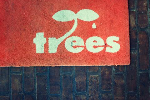trees#0124