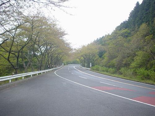 自動車評論家の森野恭行
