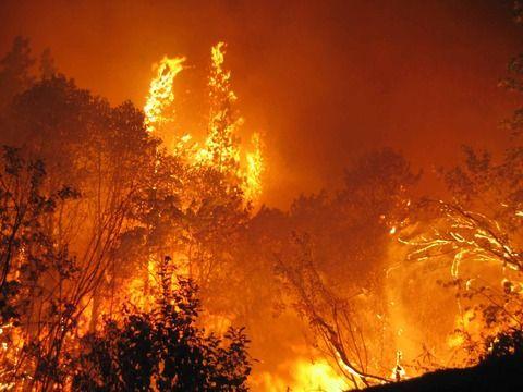 長野 山火事