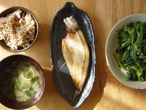 美味い魚は続く&我が家の庭事情