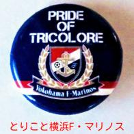 とりこと横浜F・マリノス