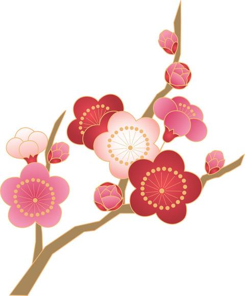 flower5498