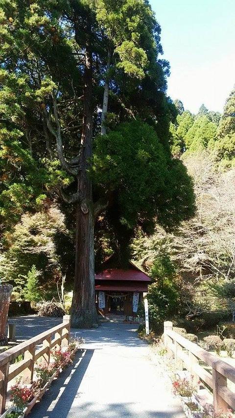 20171111産神社