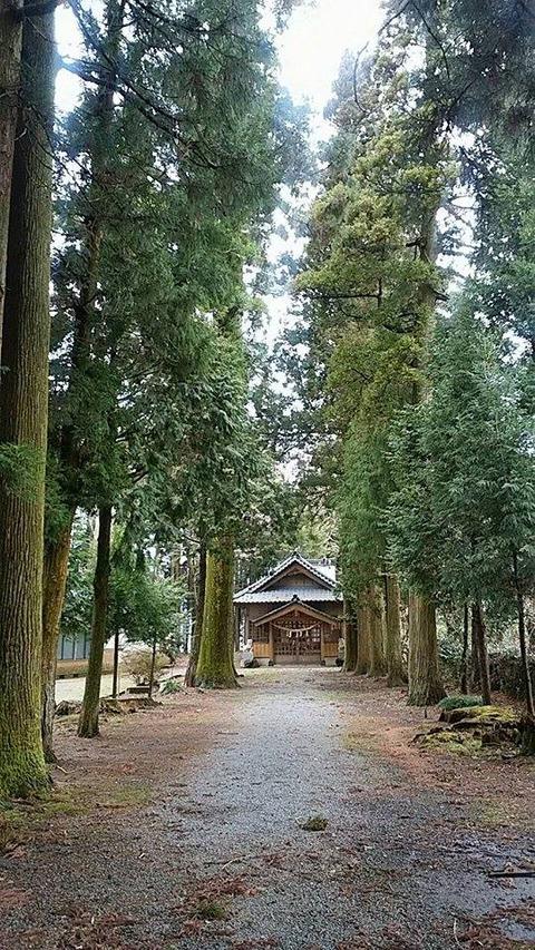 20180320乙姫神社1