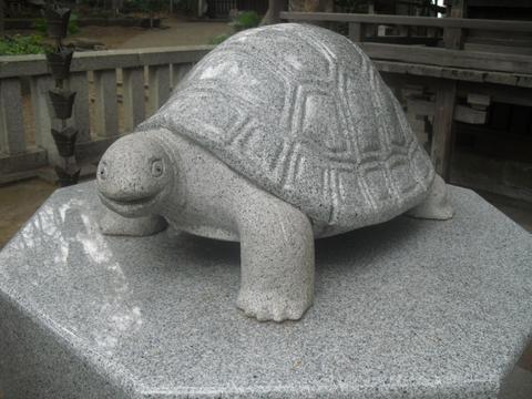 20160228亀岡八幡宮2