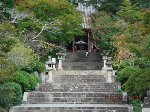 20181007檜尾山(ヒノオサン)『観心寺 金堂』-1