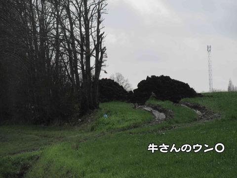 田舎の臭い 5