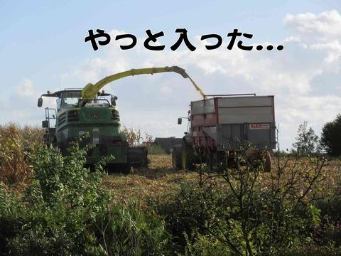 トラクター 7