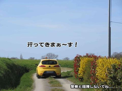 派手な車 4