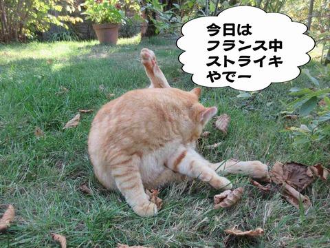 さぼり 4