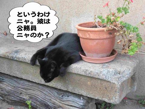 さぼり 7