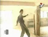 中国拳法の恐怖