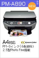 PM-A890