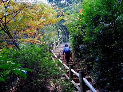 宮島を歩く (3)