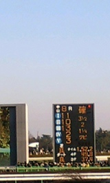 dce799fb.jpg