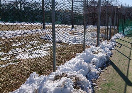 碑文谷体育館テニスコートの雪