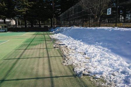 世田谷公園テニスコートの雪