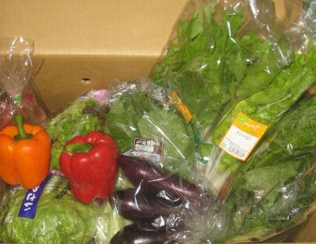風評被害にあって困っている茨城の野菜をネットで宅配注文
