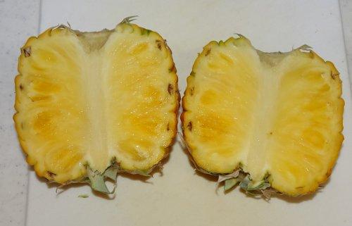 食べたパイナップルのヘタからベランダで育ててきたパイナップルを収穫。完熟パインは信じられないほどの甘さでした