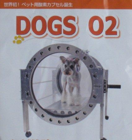 dogcapsel