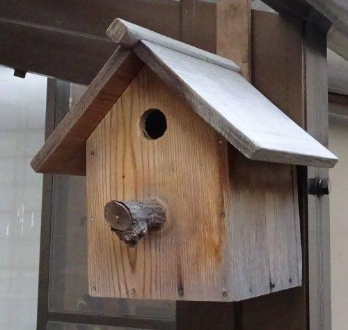 シジュウカラの巣箱
