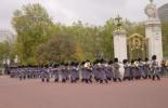 バッキンガム宮殿 衛兵の交替