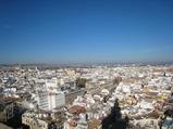 カテドラル ヒラルダの塔からの眺め