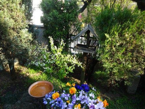 お庭はミニバードサンクチュアリ