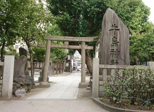 本所吾妻橋駅から、隅田公園、牛島神社経由で向島へ 隅田公園でカワセミがダイブしていました4
