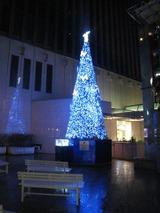 マリオンの横の通りのクリスマスツリー