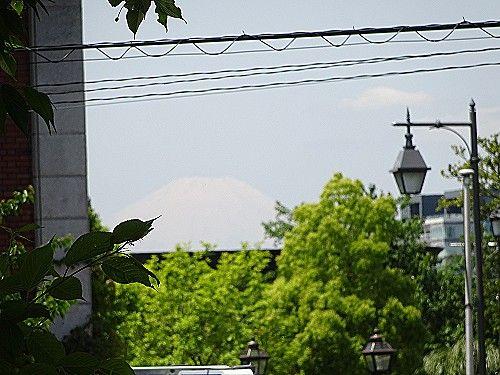 港の見える丘公園から富士山が見えました。