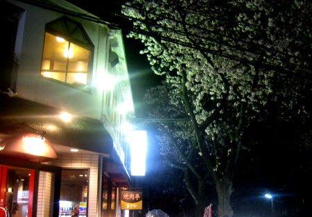 たまプラーザの三拍子 花見の宴会 通り